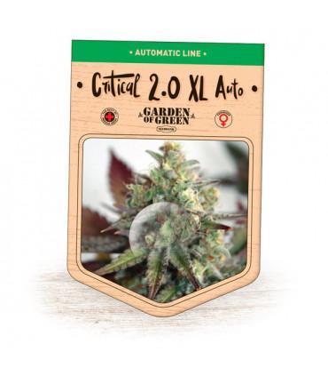Critical 2.0 XL Auto (Garden of Green)