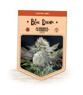 Σπόροι κάνναβης - Blue Dream (Garden of Green)