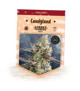 Σπόροι κάνναβης - Candyland (Garden of Green)