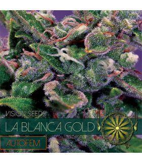 Σπόροι κάνναβης - La Blanca Gold AutoFem (Vision Seeds)