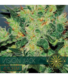 Σπόροι κάνναβης - Vision Jack AutoFem (Vision Seeds)