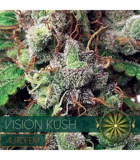 Σπόροι κάνναβης - Vision Kush AutoFem (Vision Seeds)