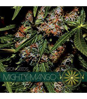 Σπόροι κάνναβης - Mighty Mango Bud (VIsion Seeds)