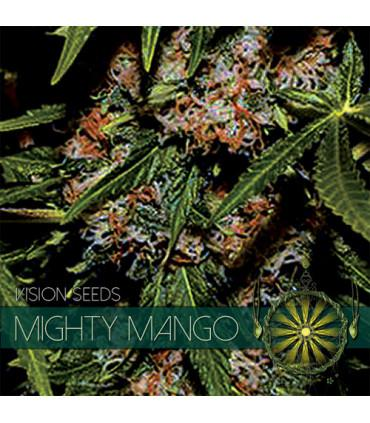 Mighty Mango Bud (VIsion Seeds)