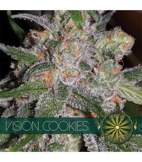 Σπόροι κάνναβης - Vision Cookies (Vision Seeds)