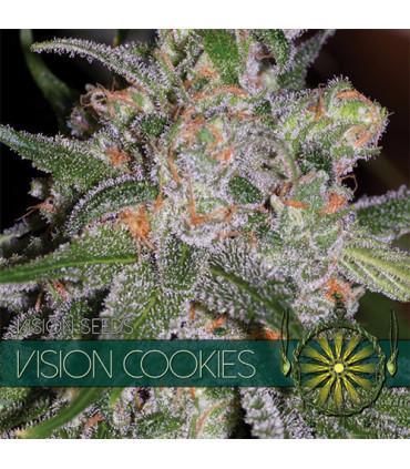 Vision Cookies (Vision Seeds)