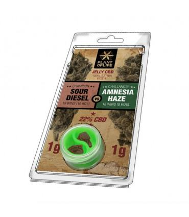 Plant of Life - CBD Jelly 22% Sour Diesel 0.5g + Amnesia Haze 0.5g