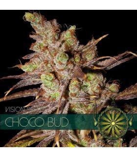 Σπόροι κάνναβης - Choco Bud (Vision Seeds)