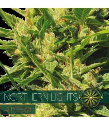 Northern Lights AutoFem (Vision Seeds)