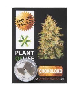 Plant of Life - CBD Hash 3,8% Chokoloko