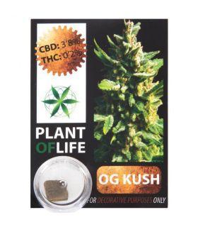 Σπόροι κάνναβης - CBD Hash 3,8% OG Kush