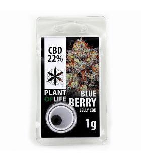 Σπόροι κάνναβης - Blueberry CBD Jelly 22%
