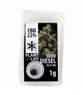Σπόροι κάνναβης - Sour Diesel CBD Jelly 22%