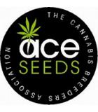 A.C.E Seeds