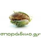 σποράδικο.gr