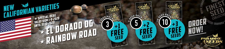 Paradise seeds προσφορές